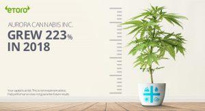 Aurora Cannabis Crescita